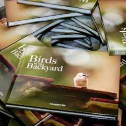 book-birdsinmybackyard